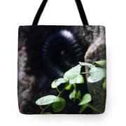 Arthropoda Tote Bag