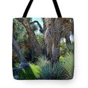 Arthur B Ripley Desert Woodland State Park Tote Bag