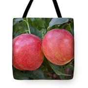 Artic Summer Nectarines Tote Bag
