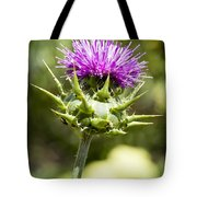 Artichoke Thistle 3 Tote Bag