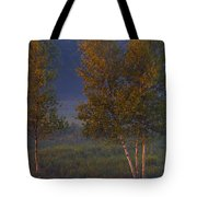 Artificial Sunset Tote Bag
