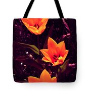 Artistic Tulips By Earl's Photography Tote Bag
