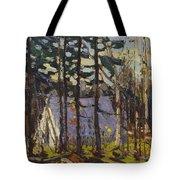Artist's Camp, Canoe Lake, Algonquin Park Tote Bag