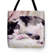 Artist's Cat Sleeping Tote Bag