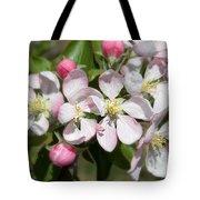 Apple Blossom Time Tote Bag