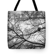 Snow On Bare Branches Tote Bag