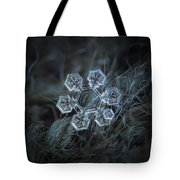Icy Jewel Tote Bag