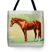 Roasting Chestnut - Morgan Horse Tote Bag