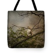 Higher Perspective Tote Bag