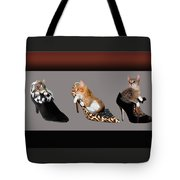 Kittens In Designer Ladies Shoes Tote Bag