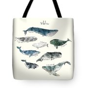 Whales Tote Bag by Amy Hamilton