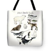 Arctic And Antarctic Animals Tote Bag