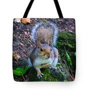 Glasgow Squirrel Tote Bag