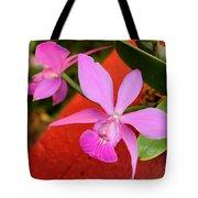 Pink Pair Tote Bag