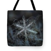 Leaves Of Ice, Panoramic Version Tote Bag