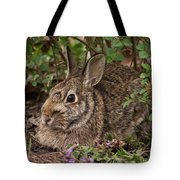 A Very Fine Bunny Resting Under The Lilac Bush Tote Bag