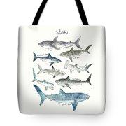 Sharks - Landscape Format Tote Bag