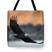 Evening Catch Tote Bag