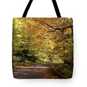 Mountain Road Stowe Vt Tote Bag