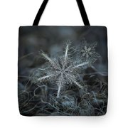 Stars In My Pocket Like Grains Of Sand Tote Bag by Alexey Kljatov