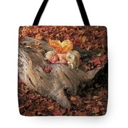 Woodland Fairy Tote Bag by Anne Geddes