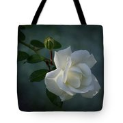 The Encouragement Of Light Tote Bag
