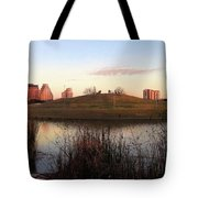Birds And Fun At Butler Park Austin - Silhouettes 1 Tote Bag