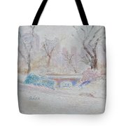 Central Park Record Early March Cold Circa 2007 Tote Bag