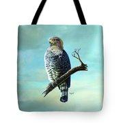 Southern Banded Snake Eagle Tote Bag