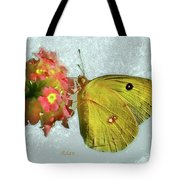 Southern Dogface Butterfly Feasting On December Lantanas Austin V2 Tote Bag
