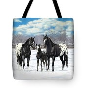 Black Appaloosa Horses In Winter Pasture Tote Bag