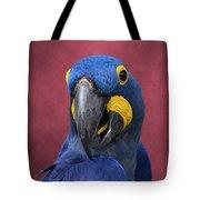 Cheeky Macaw Tote Bag