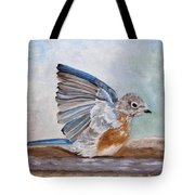 Dip Time - Eastern Bluebird Tote Bag by Angeles M Pomata