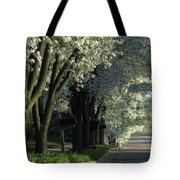 Shady Grove Tote Bag