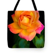 Arundel Rose Tote Bag