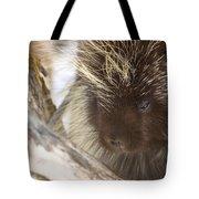 As Soft As A Pincushion Tote Bag