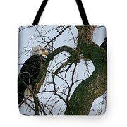 As The Eagle Looks On Tote Bag