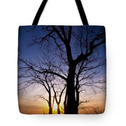 As Twilight Approaches Tote Bag