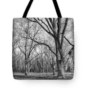 As Winter Nears Tote Bag