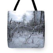 As Winter Returns Tote Bag