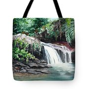 Asa Wright Falls      Sold Tote Bag