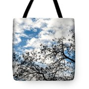 Ascending To Infinity Tote Bag