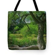 Ash Tree Tote Bag