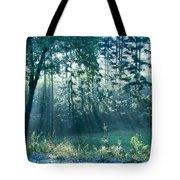 Ashenvale Forest Tote Bag
