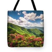 Asheville Nc Blue Ridge Parkway Spring Flowers Scenic Landscape Tote Bag
