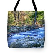 Asheville Stream Tote Bag