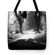 Ashland Cemetery Tote Bag