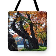 Asian Cherry Trees Of Fall Tote Bag