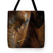 Asian Elephant Closeup Portrait Tote Bag