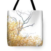 Asian In The South Tote Bag